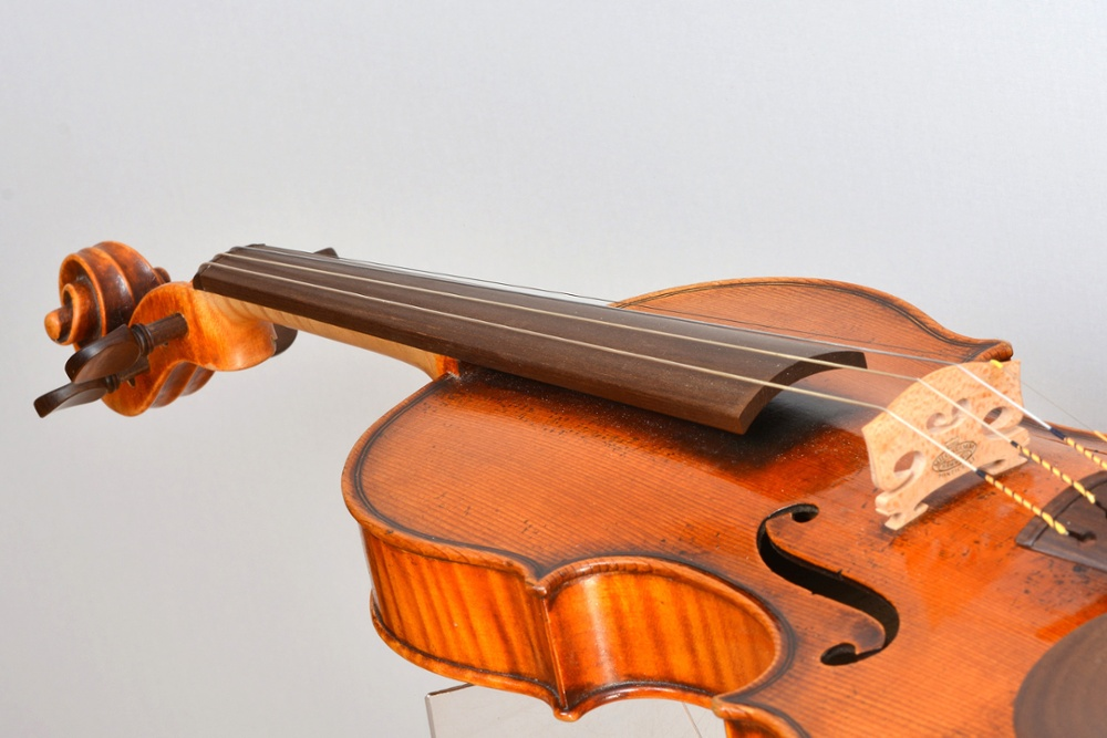 Violin with Sonowood finger board made of maple