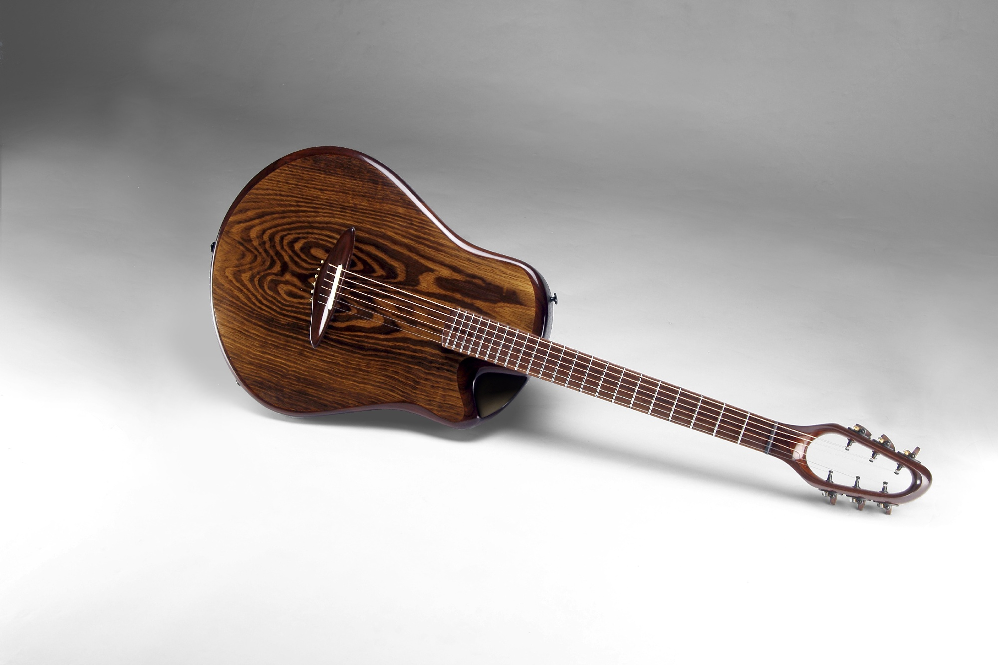 sonowood: sustainable wood for guitars