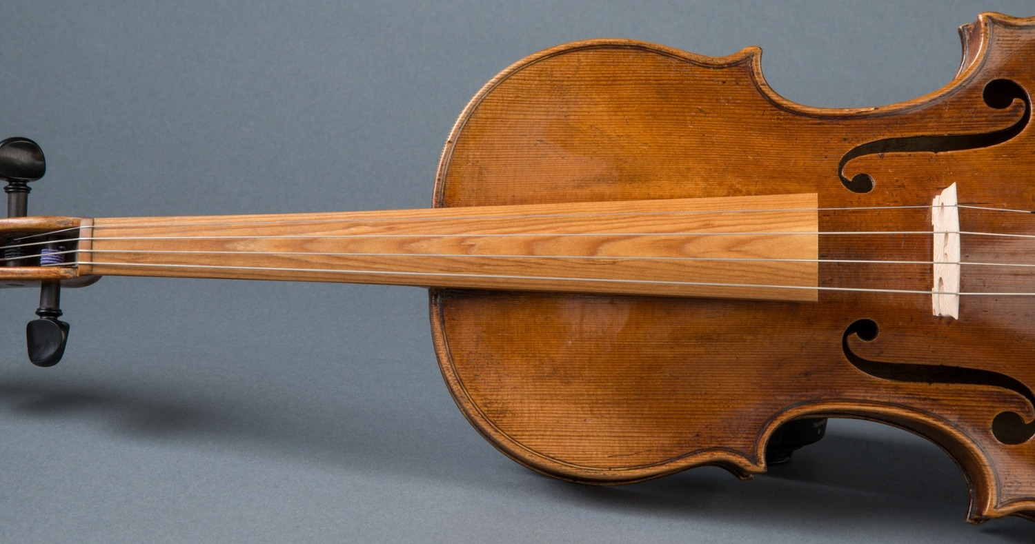 sonowood: tailor made local wood for bowed string instruments
